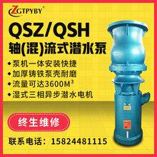 QSH大流量潜水混流泵农田灌溉水泵抗旱防汛排水潜水泵图片