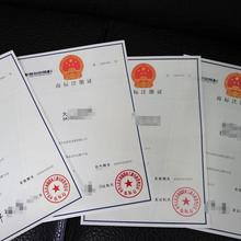 湛江坡頭商標專利權服務價格圖片