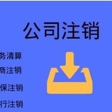 天津红桥代办公司注销可信赖图片