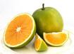 天然水果綠色水果無公害水果