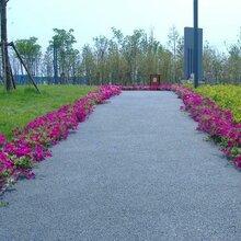 上海天然露骨料廠家露骨料透水混凝土材料露骨料透水地坪施工圖片