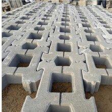常州護坡磚供應商圖片