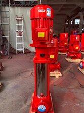 天津喷淋泵厂家供应图片