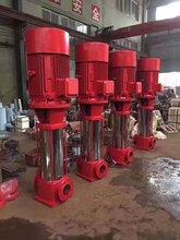 北京喷淋泵价格图片