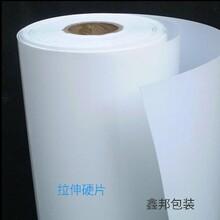 輝瑞包裝聚丙稀塑料片吸塑PP卷材批發定制圖片