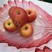 草莓苗供應麥特萊草莓苗高產方法麥特萊農戶種植