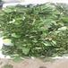 草莓苗建園哈尼草莓苗高產方法哈尼市場介紹