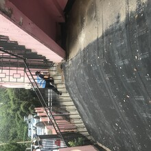 胶州市灭蚂蚁服务价格图片