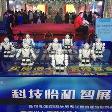 东莞春晚机器人出租报价图片