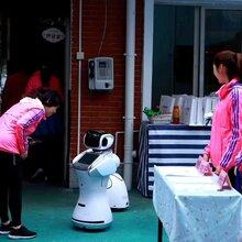 广州番禺小精灵机器人租赁公司图片