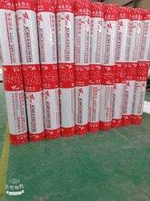 厂家供应300g聚乙烯丙纶防水卷材-可定制生产-旭泰图片