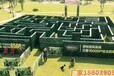 連云港大型綠植迷宮設計獨特