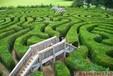 鶴壁綠植迷宮定制制作