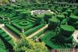 清徐綠植迷宮多少錢
