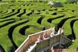 長沙綠植迷宮價格美麗