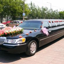 高新区婚车出租价格图片