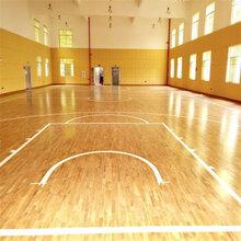 体育场馆专用木地板篮球馆室内实木地板乒乓球地板图片