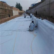 廠家供應耐酸堿復合土工膜化工處理池防水復合膜圖片