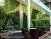 可定制人造高档真植物墙立体绿化墙室内外专用装饰生态绿植墙