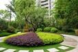 上海園林綠化