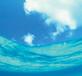 香波(洗發水)香精海洋之心香精日化香精香波專用香精