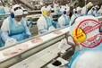 福建武夷山出国劳务合法打工建筑工农场工厂