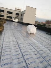 镜湖区屋面液体卷材公司团队图片