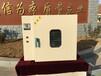 廣州101A-1電熱鼓風干燥箱定制