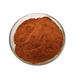 益生菌固体饮料无糖代餐粉oem代加工青汁粉益生菌