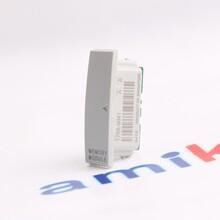 ELECTRICIS200IVFBG1AAA温度监测器图片