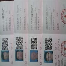 延慶區叉車培訓圖片