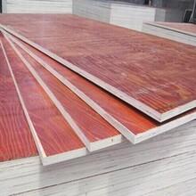 舟山木质建筑模板厂家图片