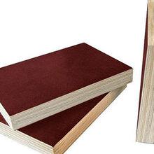 无锡木质建筑模板承包图片