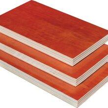 舟山木质建筑模板图片