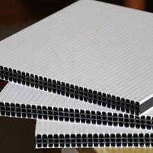 东台新型建筑模板承包图片