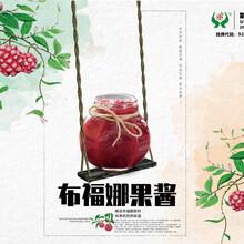 杭州黑老虎價格圖片