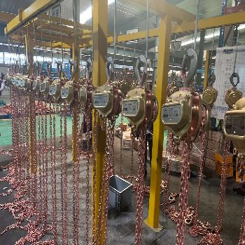 寧夏電動葫蘆廠家