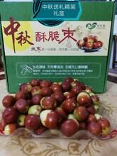 零陵區農產品種植方法圖片