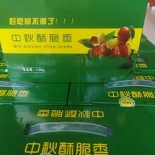 陽江酥脆棗價錢圖片
