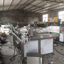 食品廠用小型香菇木耳果蔬清洗機,清洗機廠家圖片