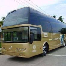客車)黃島到天津汽車直達(發車時刻表)天天發車圖片