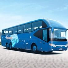 梁山到武漢大巴客車全程高速圖片
