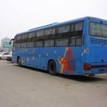 客車)濰坊到黃梅大巴客車(發車時刻表)乘車電話圖片