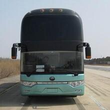 客車)膠州到延吉臥鋪大巴車(發車時刻表)票價優惠圖片