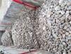 宁德钢厂鹅卵石/水处理鹅卵石滤料一吨价格
