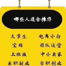 天津拼多多無貨源店群網上開店招代理加盟一對一指導圖片