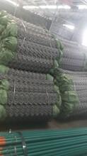 供应菱形网金属网丝网图片