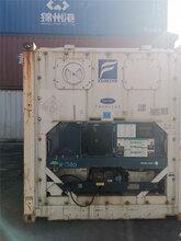 西青区冷藏集装箱出租公司图片