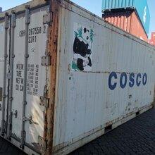 津南區二手冷凍集裝箱圖片