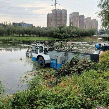 水草垃圾打捞船水上除草割草船水面除草保洁船